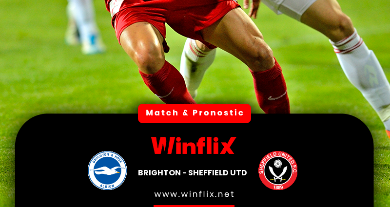 Pronostic Brighton Hove - Sheffield United du 20/12/2020 : notre prédiction