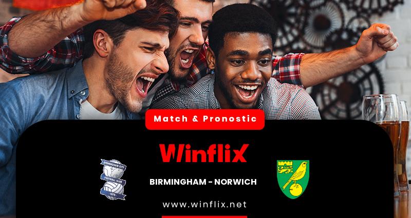 Pronostic Birmingham City - Norwich City du 23/02/2021 : notre prédiction